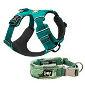 Collars, Leashes & Accessories