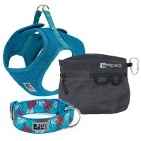 Dog Collars, Leashes & Accessories