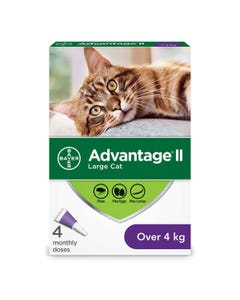 Bayer Advantage II Flea Treatment for Cats - 4 kg and over
