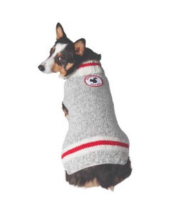 Chilly Dog - Squirrel Patrol Wool Dog Sweater