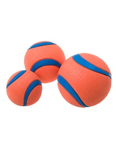 Chuckit! Ultra Balls for Dogs