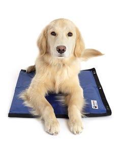 Cooler Dog Hydro Cooling Mat