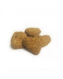 Darford Grain-Free Pumpkin Dog Biscuits