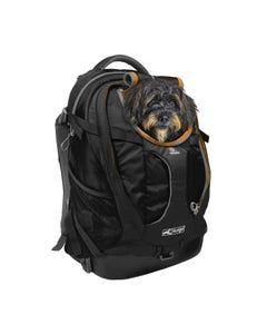 Kurgo G-Train K9 Pack with Dog