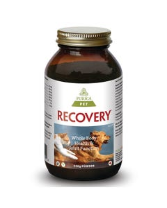 Purica Recovery SA - Pain Relief Powder