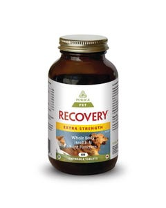 Purica Pet Recovery - Whole Body Health & Joint Function - Extra Strength Chewable Tablets - 60