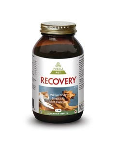 Purica Pet Recovery Regular Strength Chewable Tablets Whole Body Health for Pets