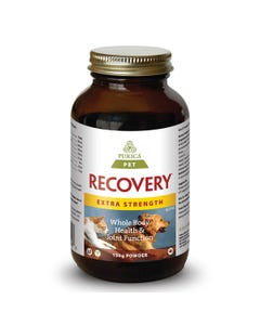 Purica Pet Recovery Extra Strength Powder Whole Body Health for Pets