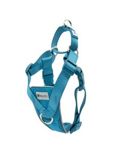 RC Pets Tempo No Pull Harness - Heather Teal