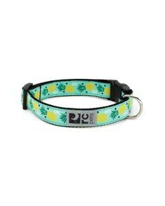 RC Pet Dog Collar - Pineapple Parade