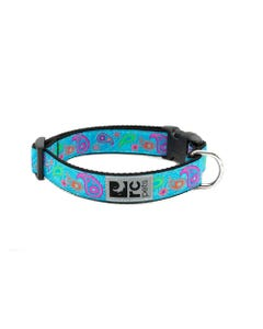 RC Pet Dog Collar - Tropical Paisley