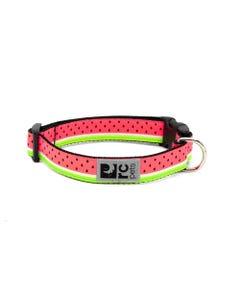 RC Pet Dog Collar - Watermelon
