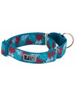 RC Pet All Webbing Training Collar - Maldives