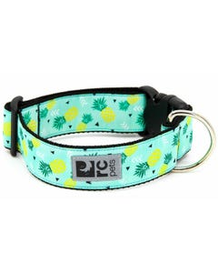 RC Pet Wide Clip Collar for Dogs - Pineapple Parade