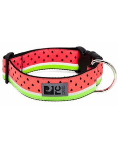 RC Pet Wide Clip Collar for Dogs - Watermelon