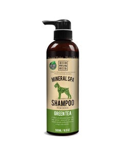 Reliq Green Tea Shampoo