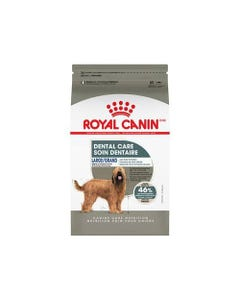 Royal Canin Dental Care Large Adult Dog Food