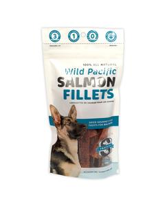 Snack21 Salmon Fillets