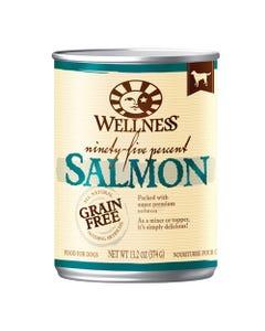 Wellness 95% Salmon