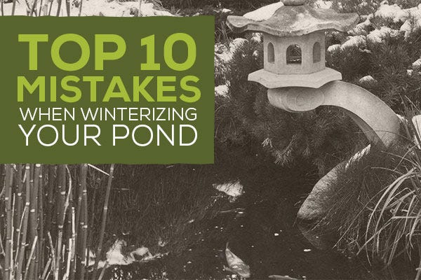 Top 10 Mistakes When Winterizing Your Pond