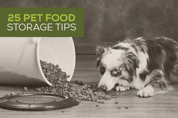 25 Pet Food Storage Tips