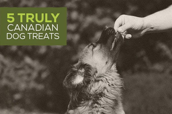 5 Truly Canadian Dog Treats