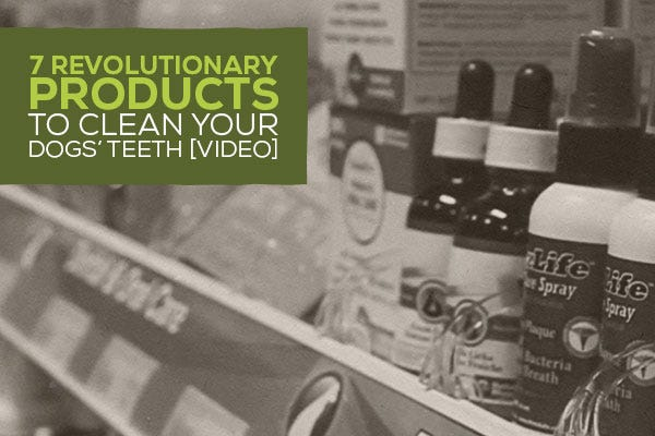 7 Revolutionary Products to Clean your Dogs' Teeth [Video]