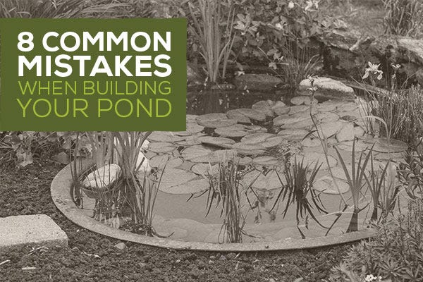 8 Common Mistakes When Building Your Pond