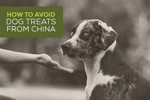 How To Avoid Dog Treats From China