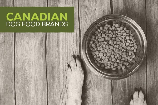Canadian Dog Food Brands