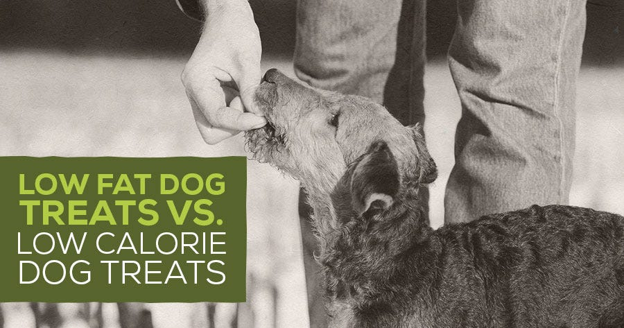 Low Fat Dog Treats vs. Low Calorie Dog Treats
