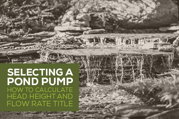 Selecting a Pond Pump: How to Calculate Head Height & Flow Rate Title