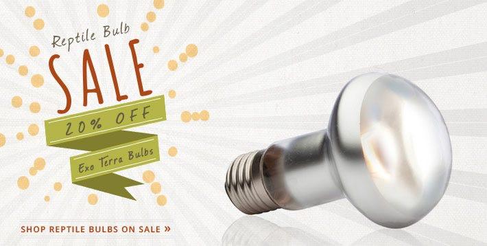 Exo-Terra Bulb Sale