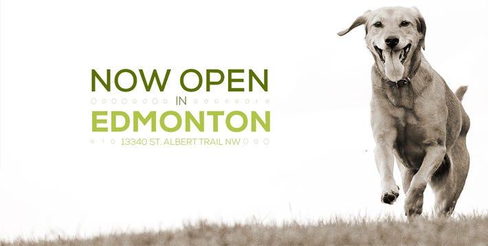 Now Open in Edmonton