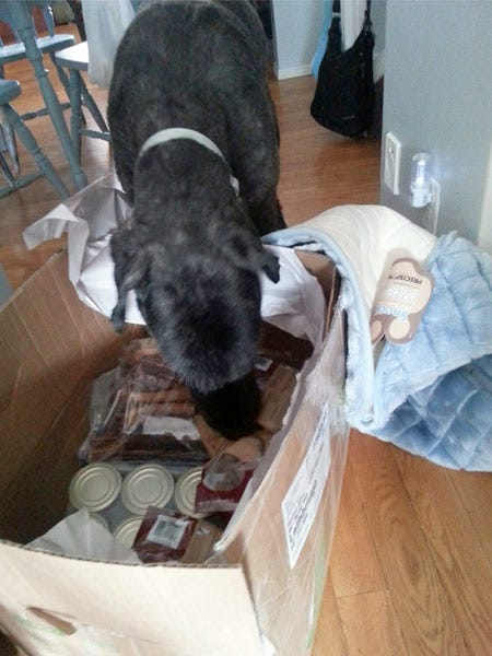Diesel Digging up his Gifts