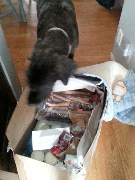 Diesel with Opened Gift