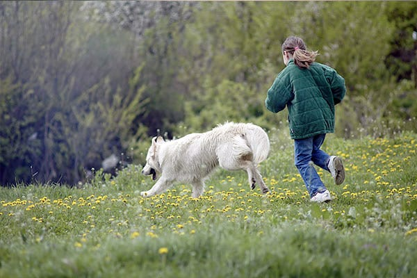 Dog and Child Running