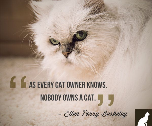Nobody Owns a Cat Quote