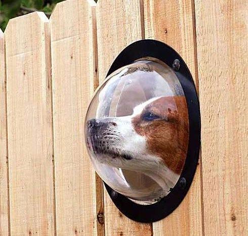 Fence Porthole