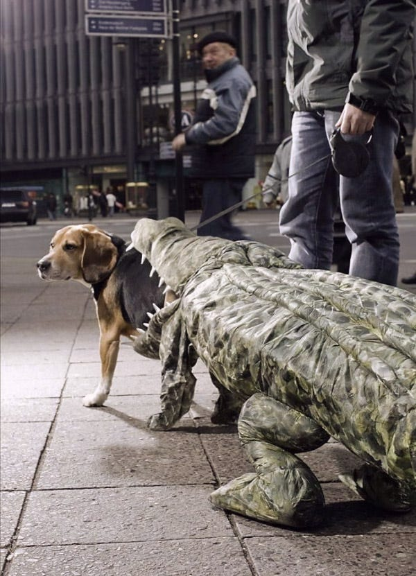 Croc Attack Dog Costume