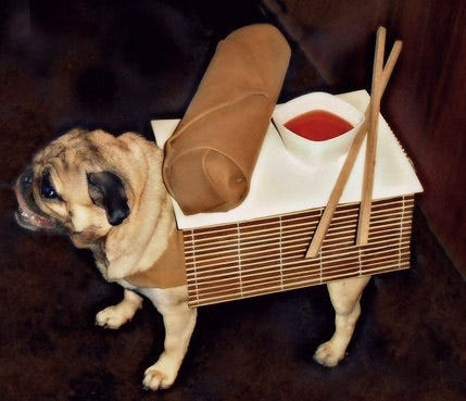 Egg Roll Dog Costume