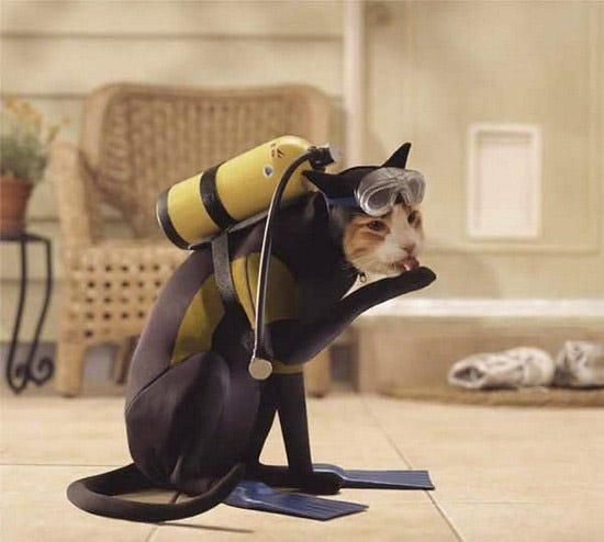 Scuba Cat Costume