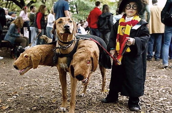 Fluffy from Harry Potter Dog Costume