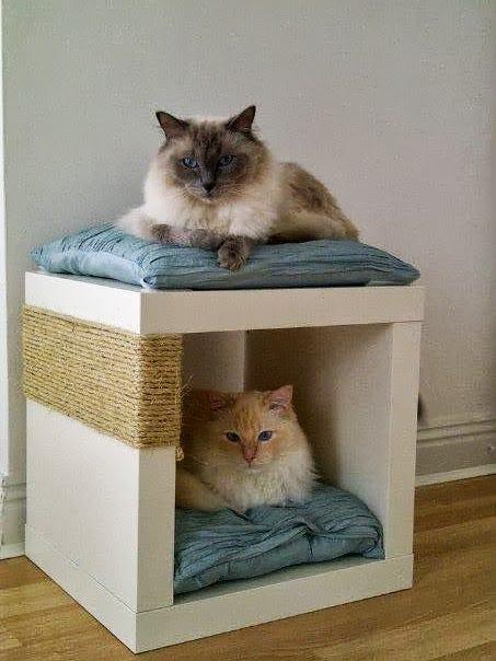 Double-Decker Cat Snug/Scratch