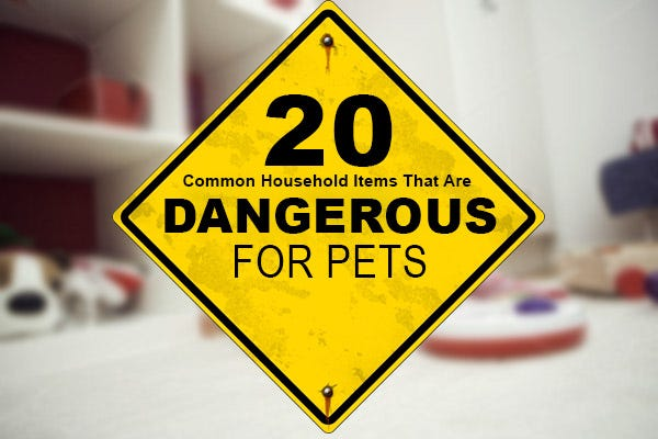 Dangerous Household Items Cool Of Household Items That Are Dangerous Picture