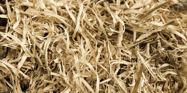 wood-fibre in dog food