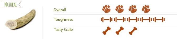 Elk Antler Dog Chews