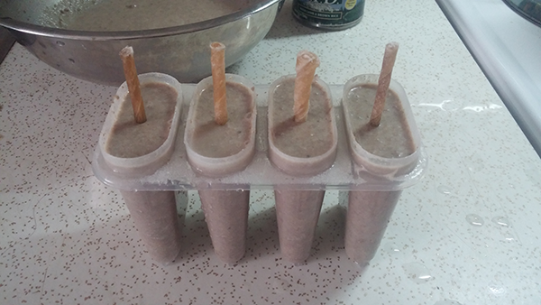 Healthy Homemade DIY Dog Popsicles