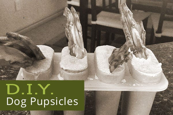 DIY Dog Pupsicles