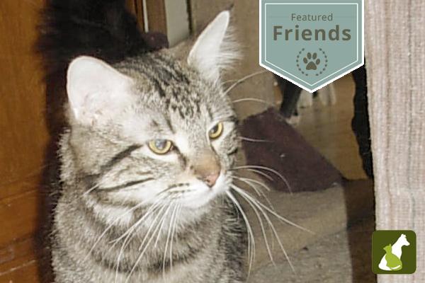 Featured Friends: Meet Noah!